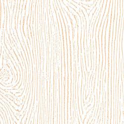 zolotoe derevo Цветовая палитра межкомнатных дверей