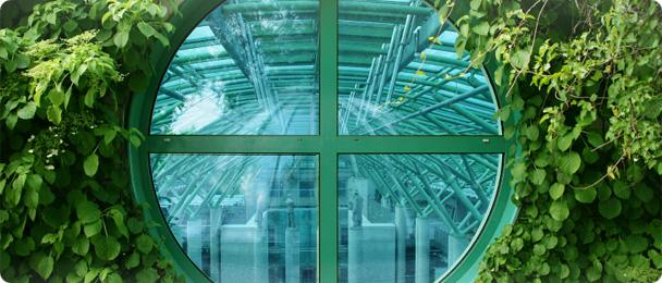 form 608 Окна нестандартной формы